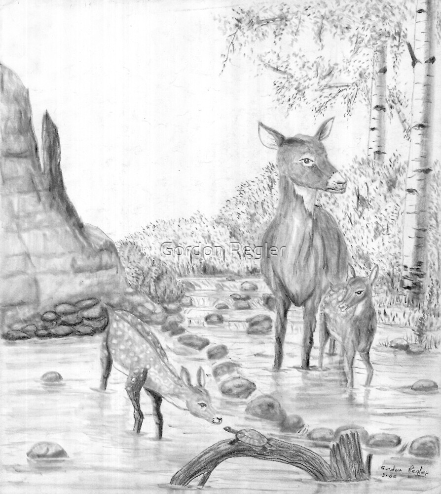 Doe & Fawns with Turtle - Charcoal by Gordon Pegler