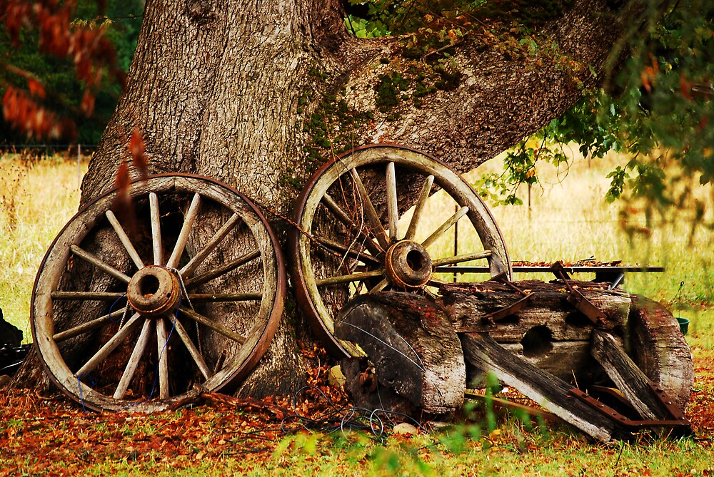 Retired cart by Anthony and Kelly Rae