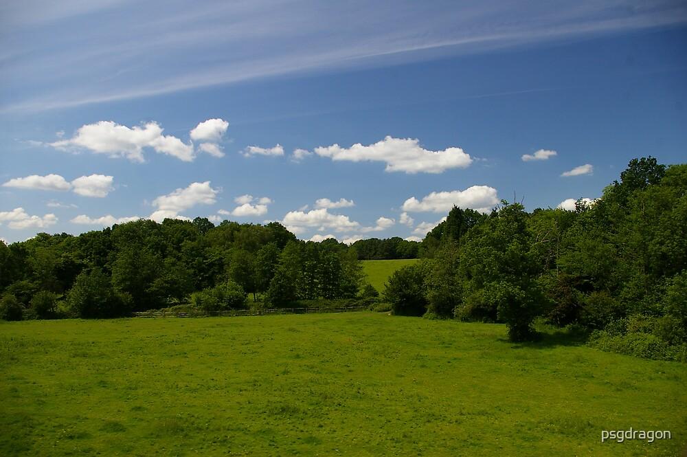 Green fields & Blue sky by psgdragon