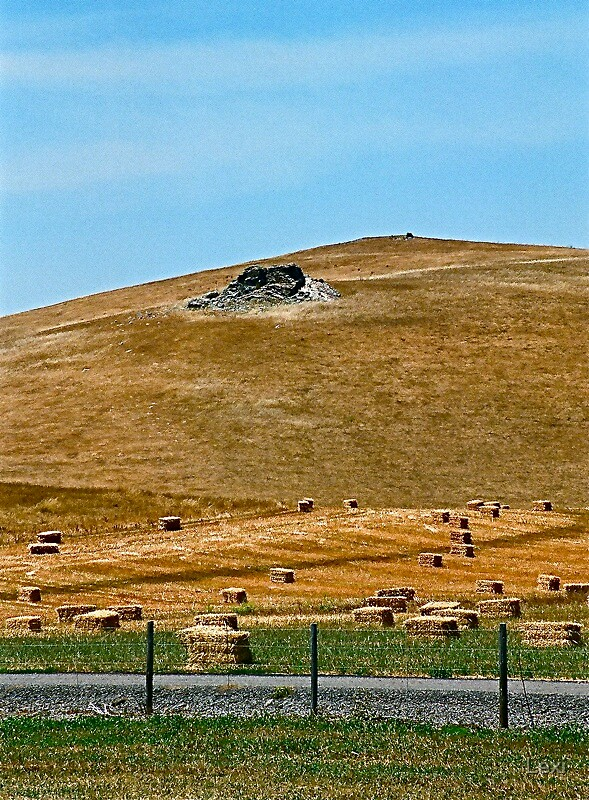 Straw Bales In Cambria by Lexi