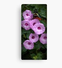 Butterfly On Colorful Morning Glories Canvas Print