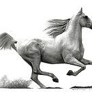 Horse by Bridie Flanagan