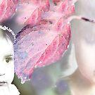 Das Wunder des Herbstes von Evita