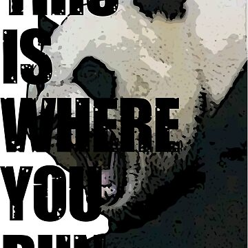 This Is Where You Run Original Panda Shirt by botarthedsgnr