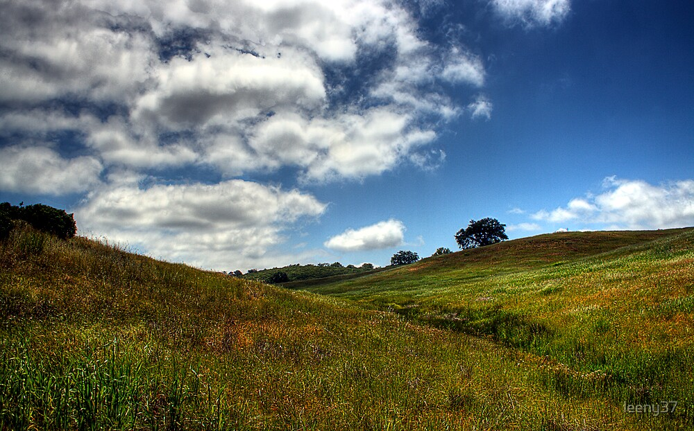 Rolling Hills by leeny37