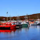 Fishing Vessels, Branch, Newfoundland  by Vickie Emms