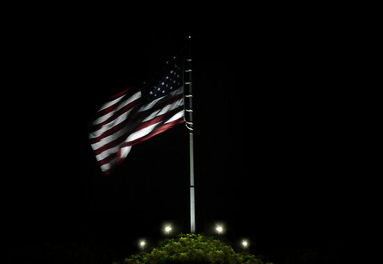 USA Night Flag by webart