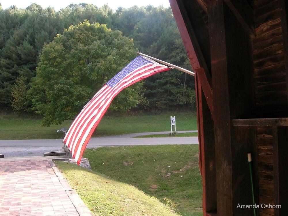 America by Amanda Osborn