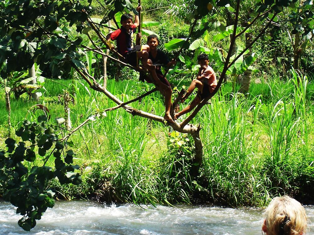 tree monkeys by Marcille Mclean