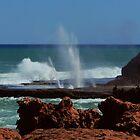 Blowholes at Quobba Point by myraj