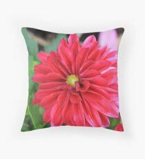 Minature Dahlia Throw Pillow