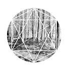 Interconnecting Wald von Jess de Mol-Ware