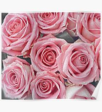 A Rose Is A Rose Is A Rose  Poster