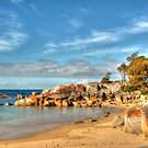 The Bay of Fires at Binalong Bay, Tasmania by Christine Smith