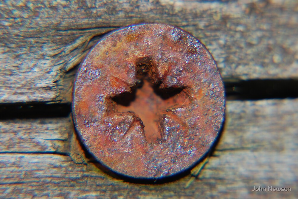 Philips Head Rusty Screw by John Newson