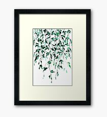 Ivy on the wall  Framed Print
