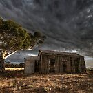 Pug and Pine by Dave  Hartley
