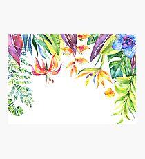 Beautiful Leaf & Flower Foliage Background Photographic Print