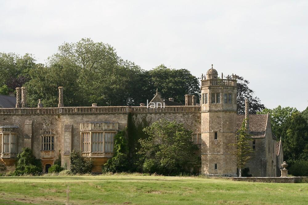 Lacock Abbey 1 by Iani