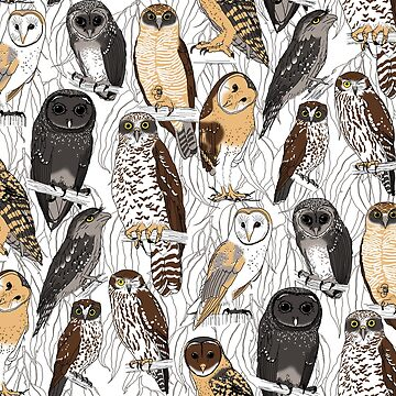 OWLS - Nocturnal birds of Australia by pavlovais