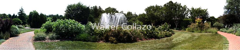 Daniel Stowe Botanical Garden Panaramic by Walter Collazo