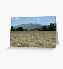Hay Field and Blencathra Greeting Card