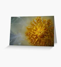waterlily series - up close Greeting Card