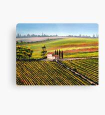 Tuscany - Vineyards Canvas Print
