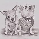 Harley and Teddy, Puppy Mill Survivors by Pam Humbargar