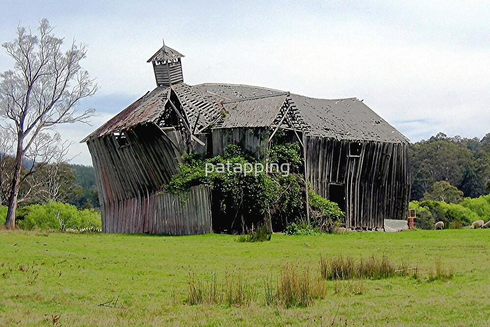 House of Sticks, Tasmania by patapping