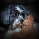 Puppy and Teddy by Michael Rowley