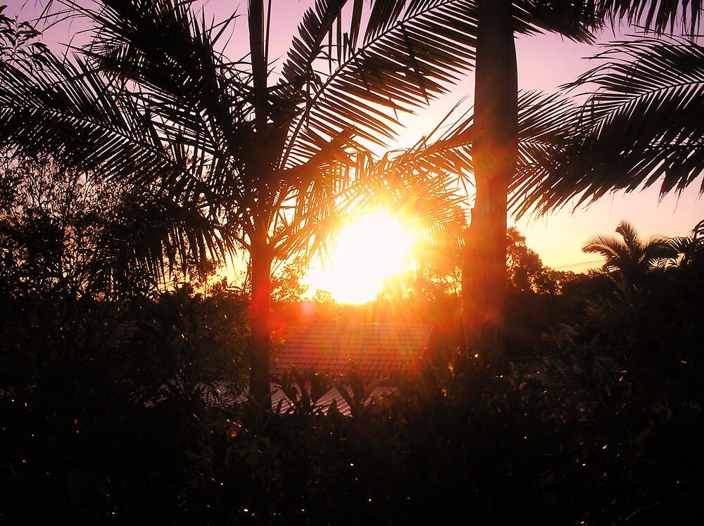 Sunsettig by JordanP