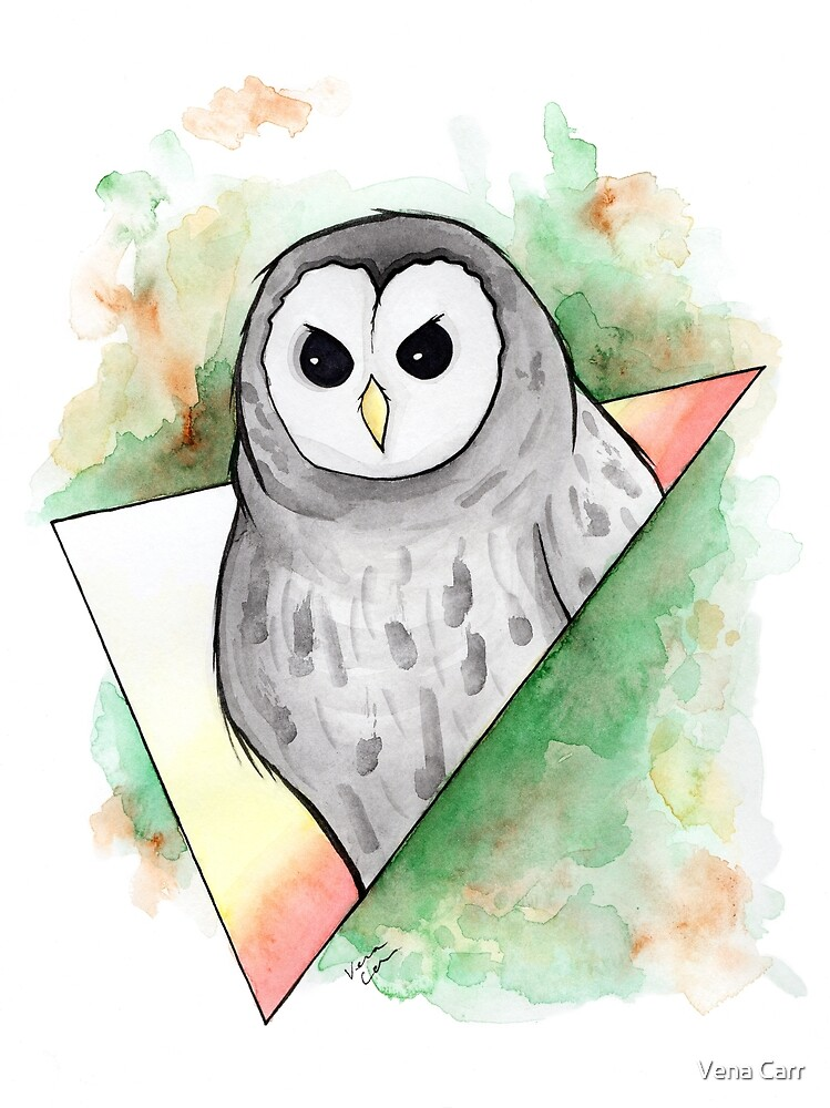 Watercolour Barred Owl Illustration by Vena Carr