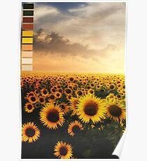 Aesthetic Sunflower Palette Poster