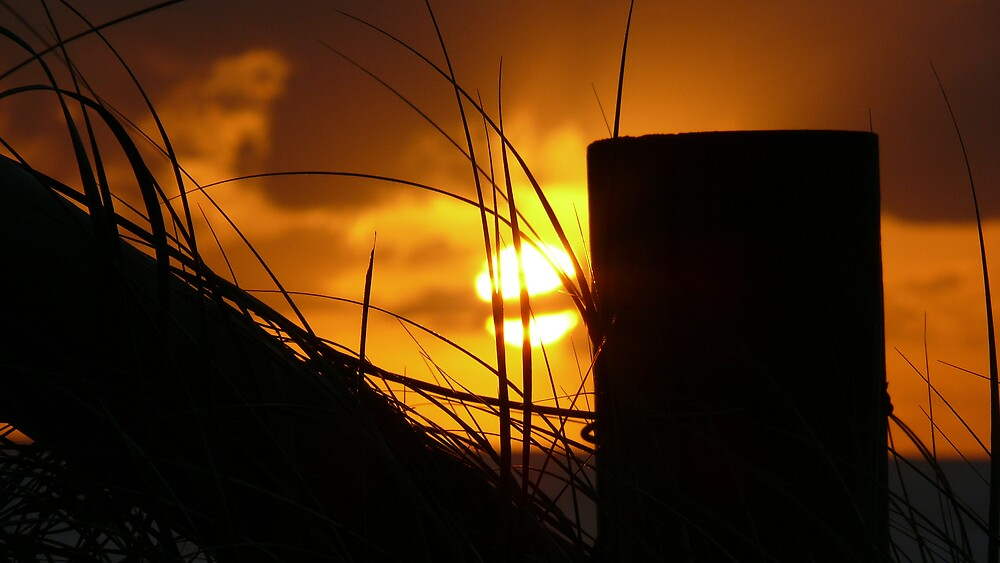 The Rising Sun by birdman4512