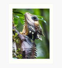 Boyds Forest Dragon (Hypsilurus boydii) with Text Art Print