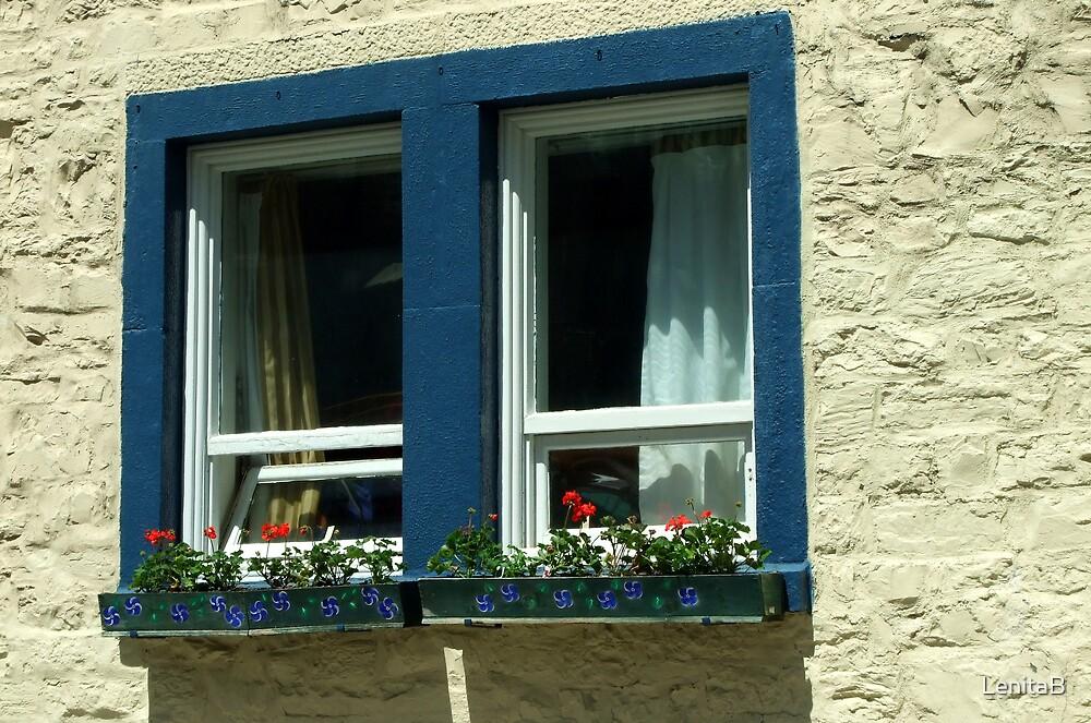 the window by LenitaB
