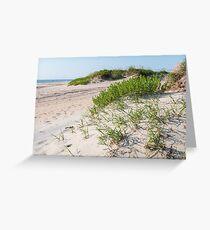 Nags Head Beach Morning Greeting Card