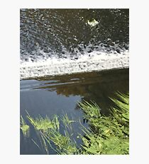 Request for a different photograph of a River. Photographic Print