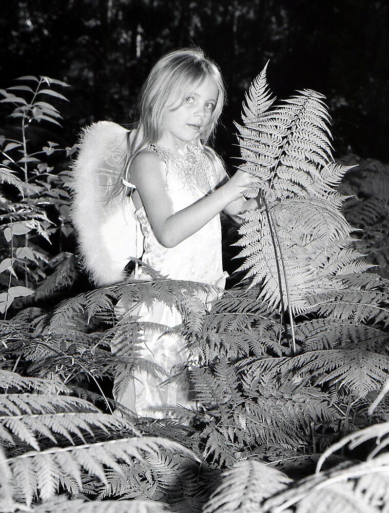 farie in the ferns by johnbrooks