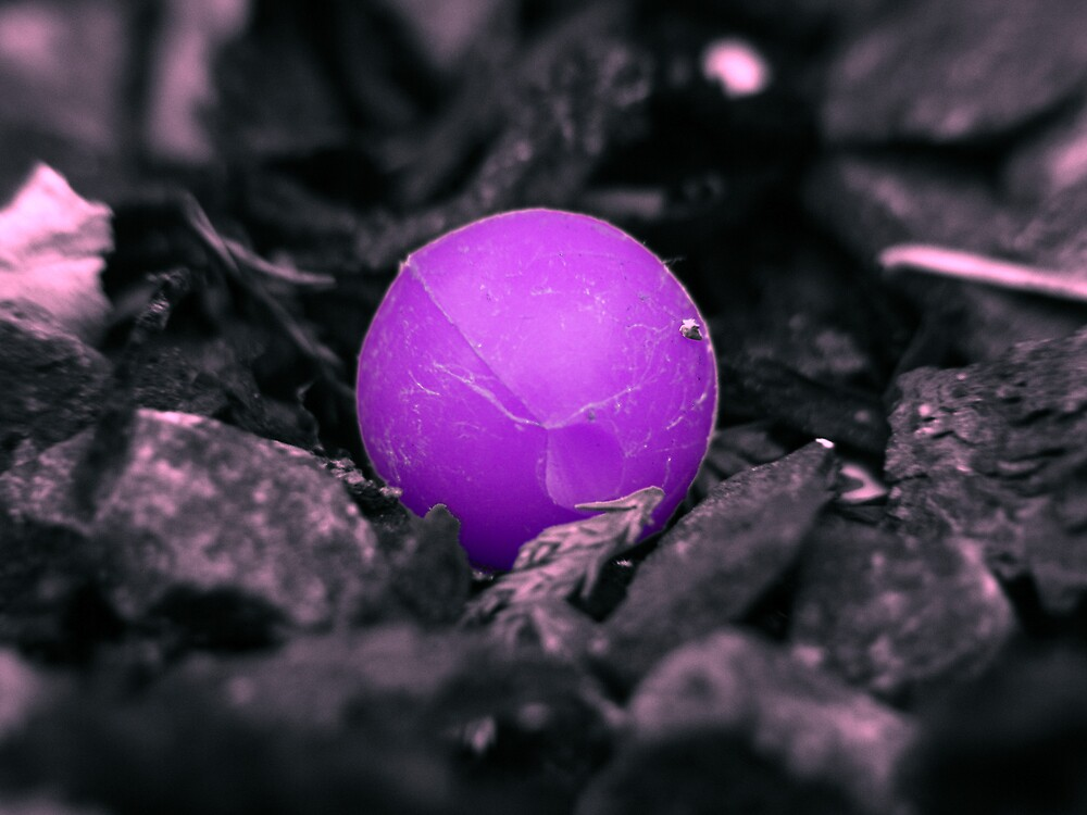 Lost BB purple version by SNAPPYDAVE