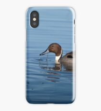 Foraging Pintail iPhone Case/Skin