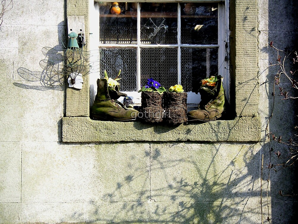 Country Window by gothgirl