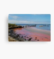 the day the red algae came to the bay Canvas Print