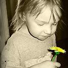 Flower Power by TeriLee