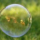 Sunset Through A Bubble by Laura Puglia