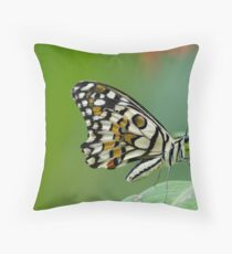 Common Lime Butterfly Throw Pillow