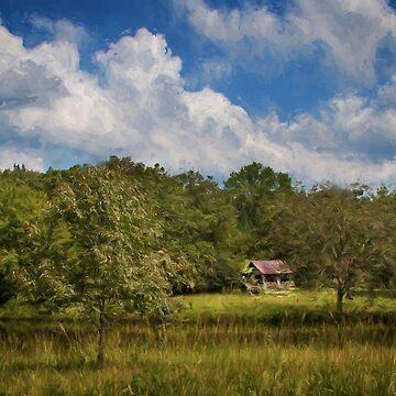 Old Barn In Georgia by wcpadgett