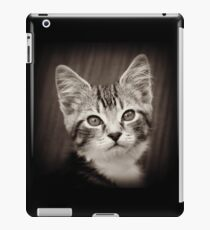 Frodo Kitten iPad Case/Skin