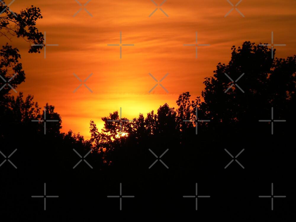 Piedmont Sunset by Sheila Simpson